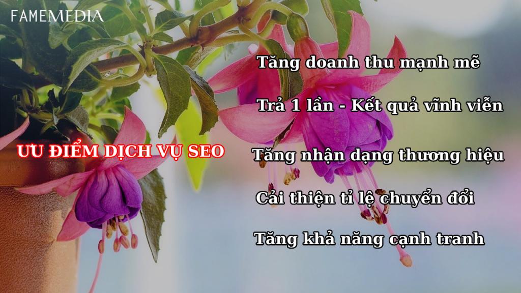 Ưu điểm dịch vụ seo